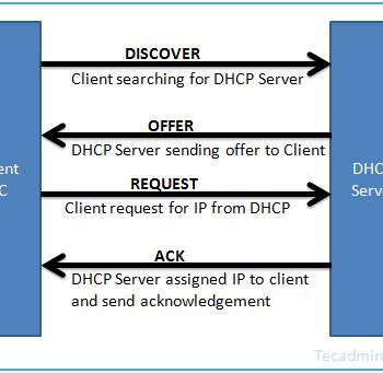 DHCP - TCP/IP - Static - Dynamic - Dynamic - Host - configuration - DHCP Server - Protocol - دی اچ سی پی - تی سی پی - تی سی پی آی پی - شبکه - استاتیک - داینامیک - آی پی - روتر - سوئیچ - ویندوز - سرور - مودم - سرویس DHCP